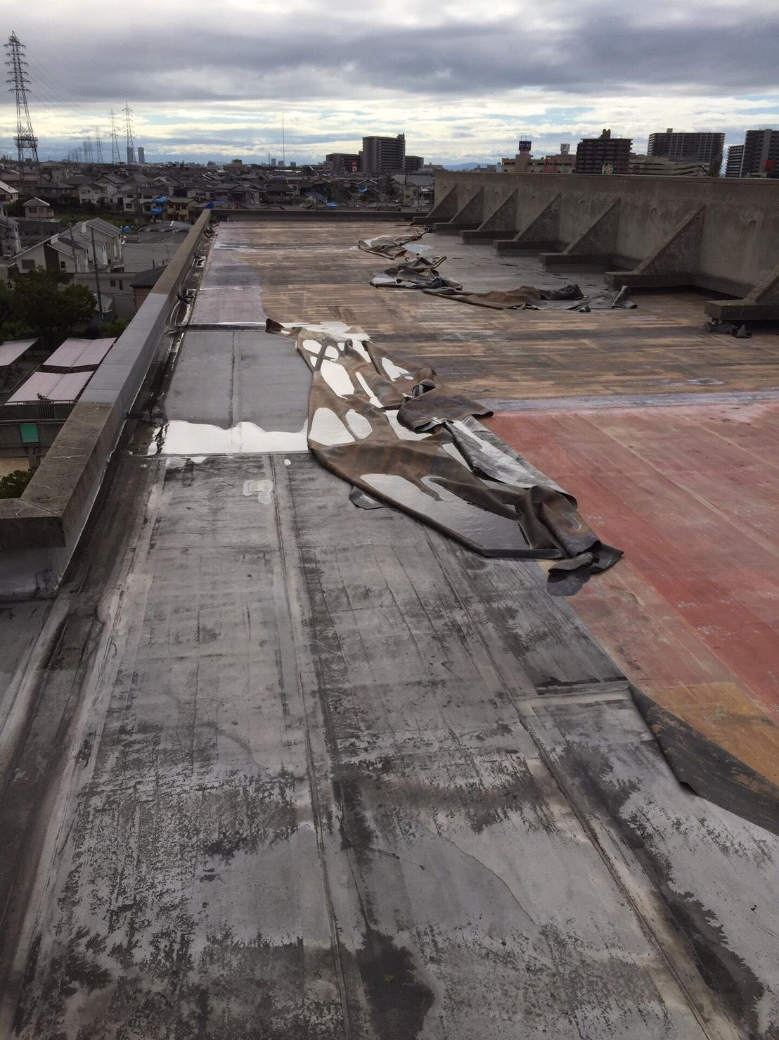 堺市西区 高等学校 屋上防水工事